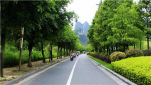 优化市容市貌!鼓楼街道凤凰村新增园林绿化景观点