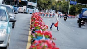 鼓楼街道在行动!人民东路景观要上新台阶