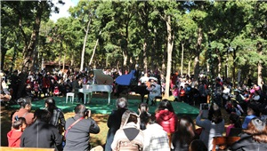 高大上 黑龙潭公园举行森林音乐会