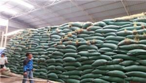 市场稳定 中储粮云南分公司去年粮油购销量90万吨
