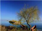 拍客| 滇池南岸,一幅淡雅的山水画