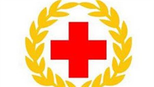 晋宁区红十字应急救护培训走进昆明立白公司