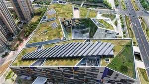 你以为屋顶绿化只是在屋顶种种花就完了?