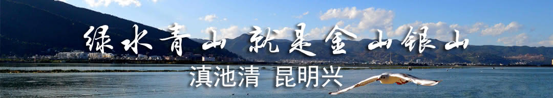 人民日报赞昆明:滇池建管结合 治污提速