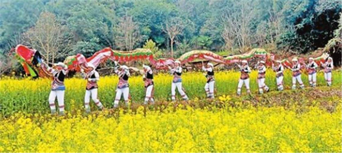 玉溪峨山举行油菜花文化旅游节