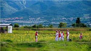 去年云南旅游业总收入比上年增长46.5% 游客满意度明显提高