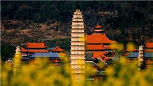 春节前四天云南预计接待游客1220万人次 揽金92亿元