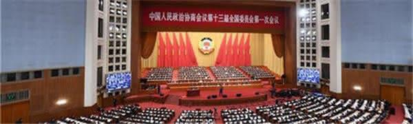 【直播】全国政协十三届一次会议第二次全体会议
