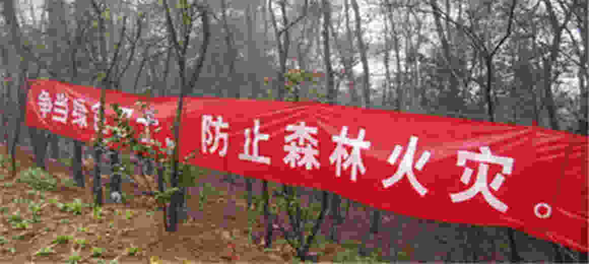 五华区农林局制定措施,严防清明期间森林火灾