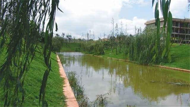 景色美如画卷!昆明多条河重现碧水清波
