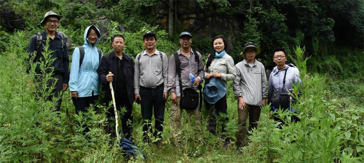 留住那些不为人知的美!云南推进极小种群野生植物保护