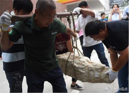 """这四件汉白玉螭头出土于北京清河一处工地,由市民杜泽宁发现并联络街道办事处保管。圆明园管理处对文物展开现场鉴定,并与园内所存文物信息进行比对,确定这四件石制构件为圆明园流散文物汉白玉螭头。12日,这批文物启程""""回家""""。"""