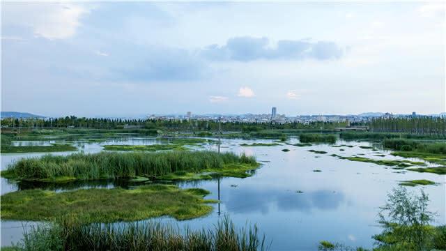 惊艳!昆明这两个湿地获国际奖项 这下藏不住了