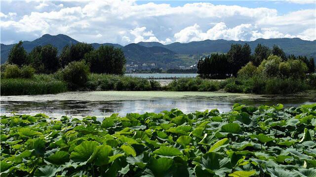 昆明6月水质排名石林阳宗海并列第一