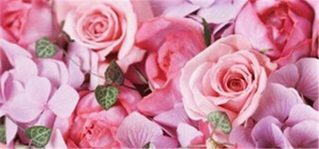 七夕节将至 外省商家来昆采购鲜花