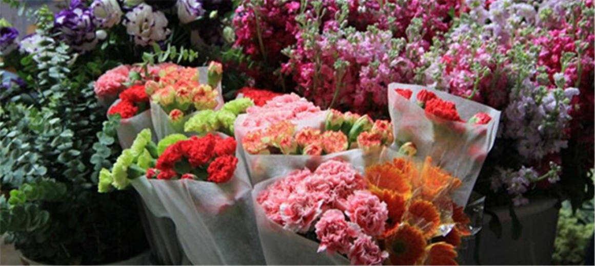 新华社:奉献全球人均一枝花!云南鲜花走向世界