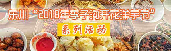 【直播】东川开花洋芋节开幕啦!吃货们,约起!