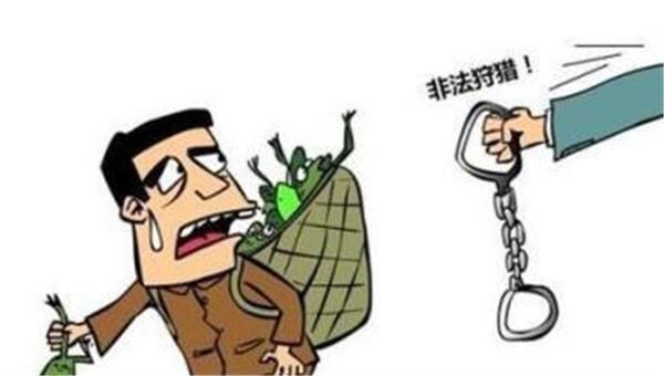 云南两人狩猎麻雀109只 触犯非法狩猎罪获刑