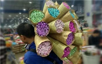 拍客|走,去昆明斗南买花去
