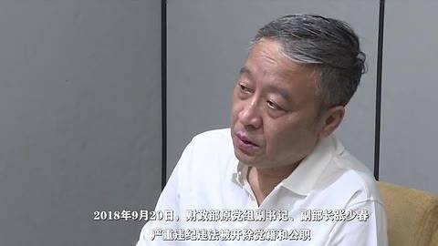 """中央纪委国家监委公布王晓光、张少春""""双开""""现场视频"""