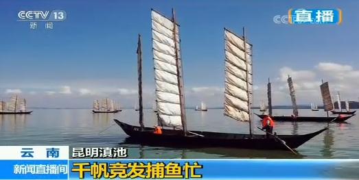 昆明又上央视:百舸入滇 千帆竞发捕鱼忙