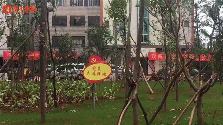 """空地变乐园 双凤社区志愿者""""认养""""绿地"""
