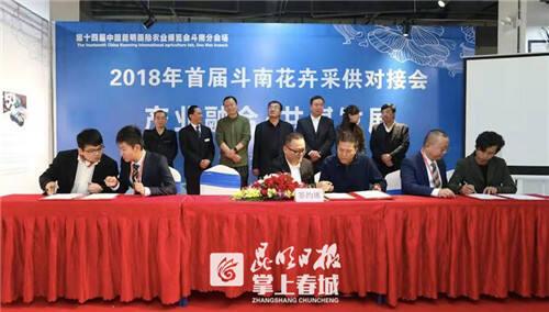 首届斗南花卉采供对接会 23家龙头花企共促产业升级