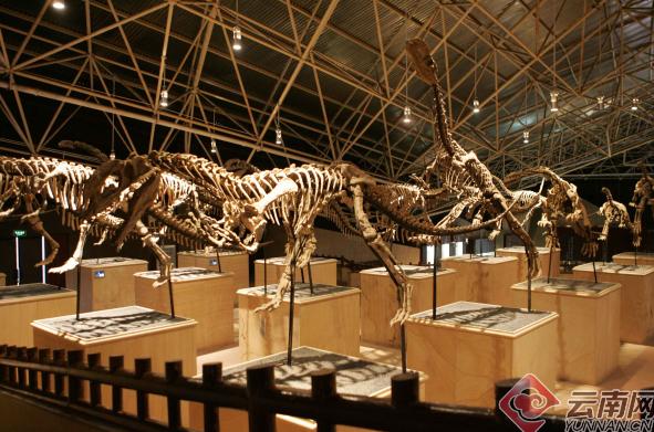 禄丰县恐龙山镇:古老化石缔造的旅游新镇