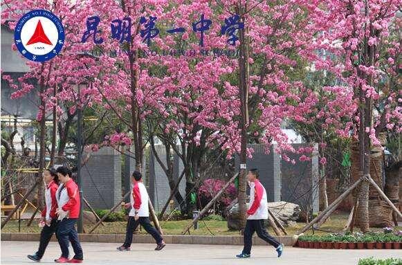 """老挝两所中学来滇""""结对子"""""""