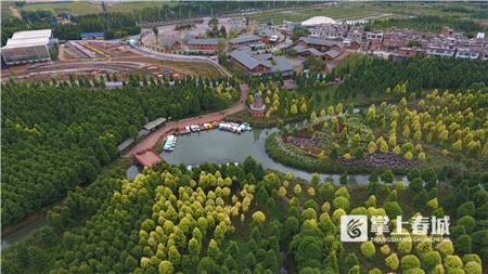 捞渔河湿地公园将种植180万株郁金香