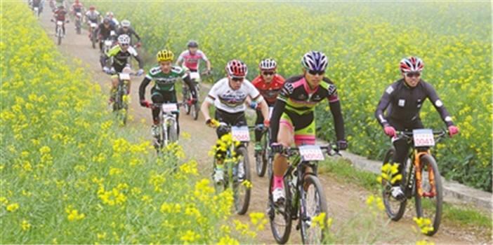 第八届国际花海自行车节3月2日举行