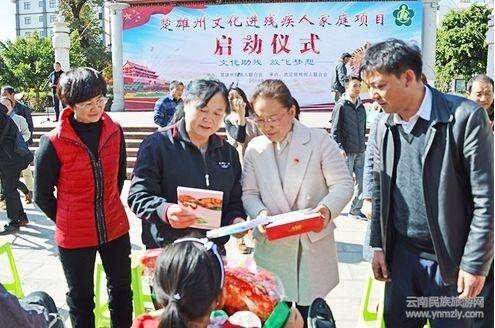 楚雄州文化进残疾人家庭项目在武定启动