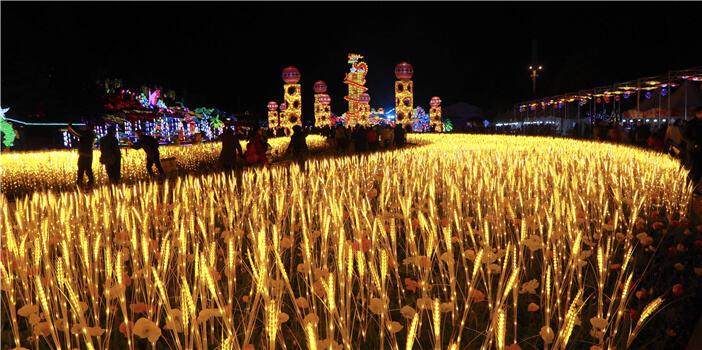 奇幻酷炫!昆明世博园8000万盏彩灯璀璨耀新春