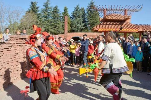 亮点多!民族村成春节云南最受追捧景点之一