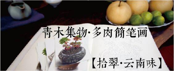 青木集物·多肉简笔画