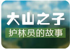 """晋怀明:最""""老实""""的护林员"""