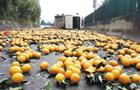 3吨橙子散落昆磨高速