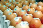 超市鸡蛋价格均涨至8元以上