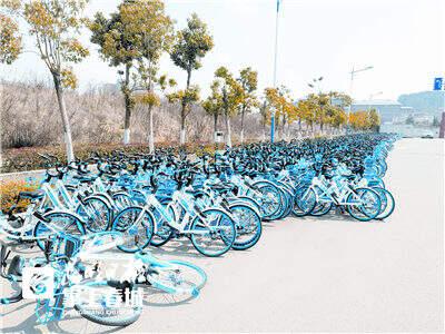 哈罗单车2.jpg