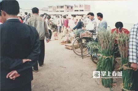 1马路市场——呈贡斗南花市的雏形.jpg