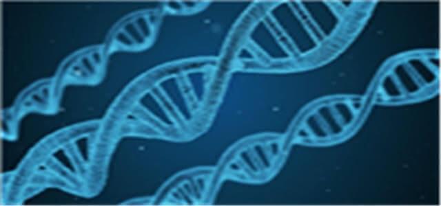 香蕉的DNA与人类DNA相似度竟达60%!