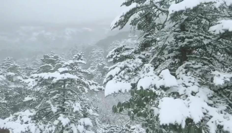昆明轿子雪山降下2019年第一场雪!太美了,我要去耍!
