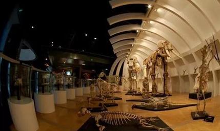 记录城市足迹!昆明的这些博物馆 你都了解吗?