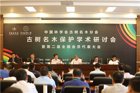 全国专家齐聚昆明 在昆召开中国古树名木保护研讨会