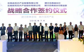 建行云南省分行普惠金融综合服务平台助力云花绽放