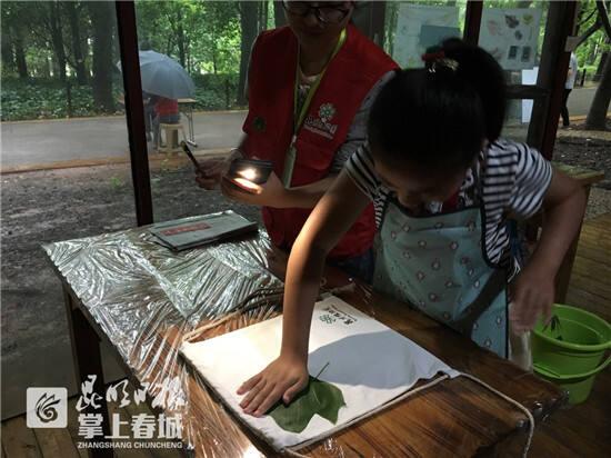 """市民昆明植物园里忙""""寻宝"""""""