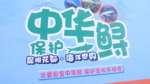 """视频丨""""我与中华鲟,共美长江水""""科普宣传活动"""