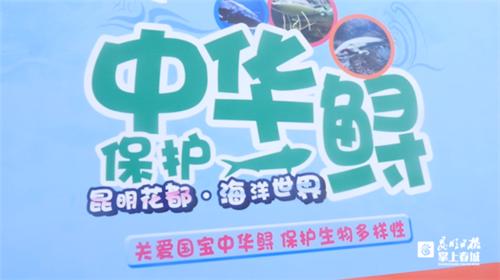 """保护濒危水生动物!""""我与中华鲟,共美长江水""""科普宣传活动举行"""