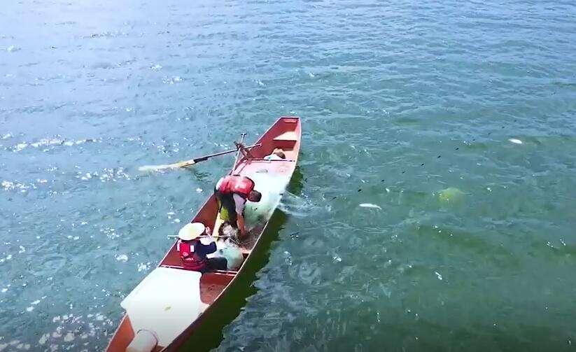 吃鱼去喽!阳宗海今天开湖