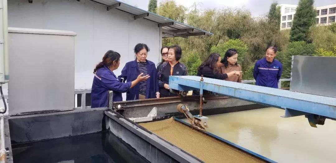 市政协夏静副主席对晋宁古城河开展巡查